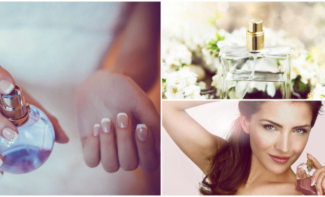 ¿Qué perfume va más contigo?