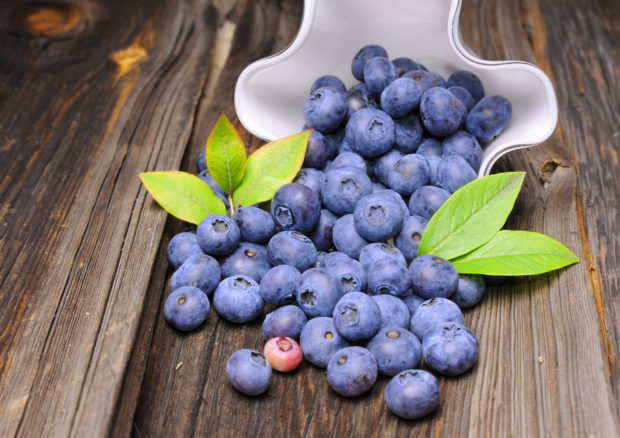 Composition of blueberries