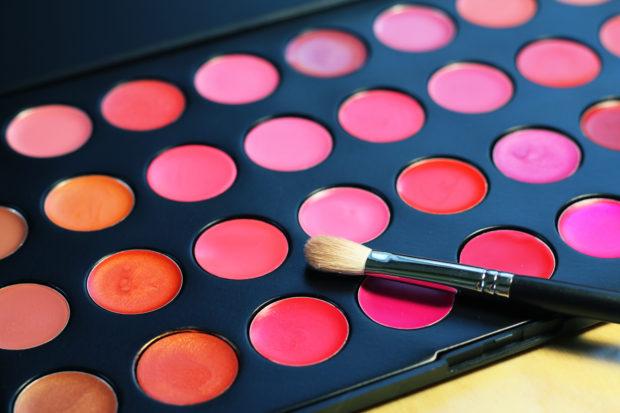 Makeup: professional lip palette