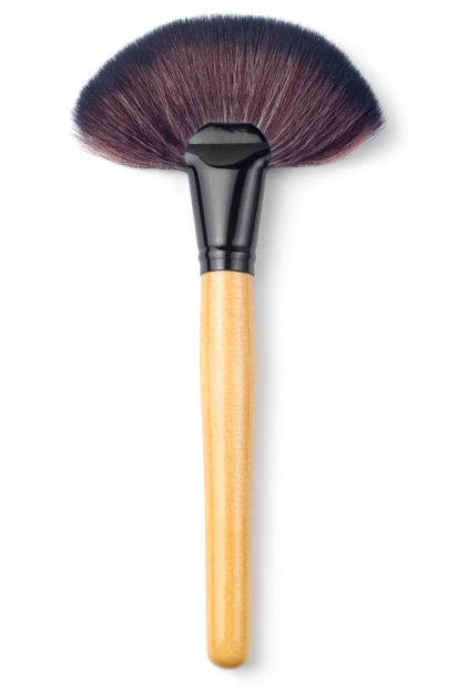 makeup brush Big fan