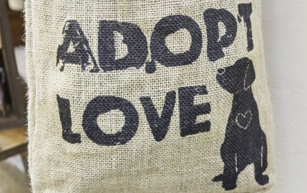 Animal Adoption sign on wicker background, love and nature
