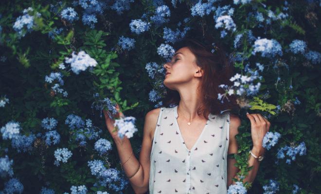 11 plantas que armonizan tu hogar