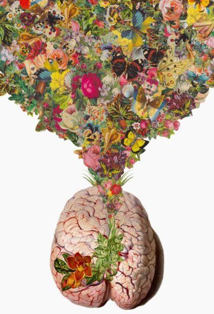 Diferencias entre el cerebro del hombre y el de la mujer