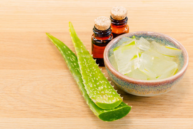 Aloevera - Natural Spas Ingredients for skin care.