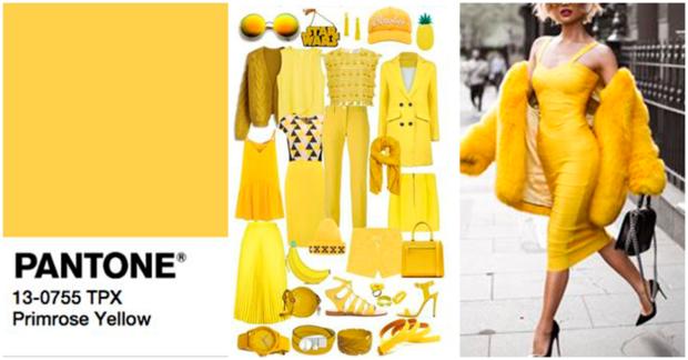 pimrose-yellow-collage
