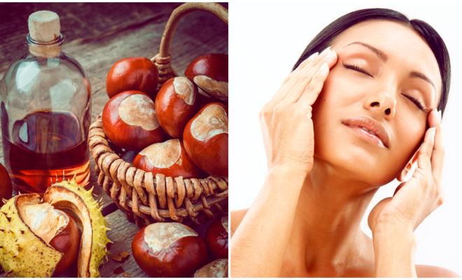 Beneficios del aceite de avellana en tu belleza