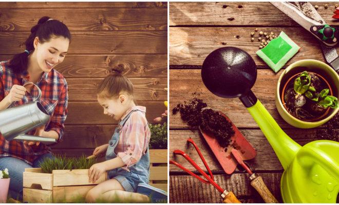 Los beneficios de la jardinería en tu salud