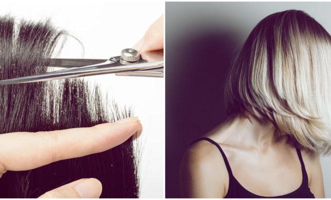 Cómo saber si tu cabello necesita un corte