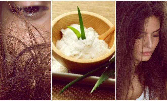 Mascarillas infalibles para cuidar las puntas de tu cabello