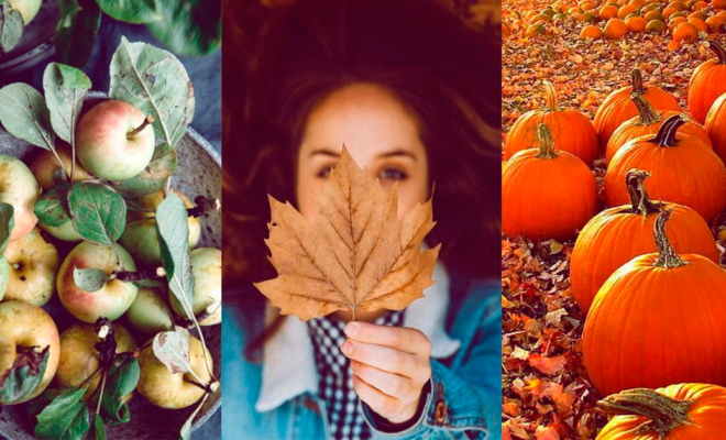 Remedios de belleza con calabaza, la fruta del otoño