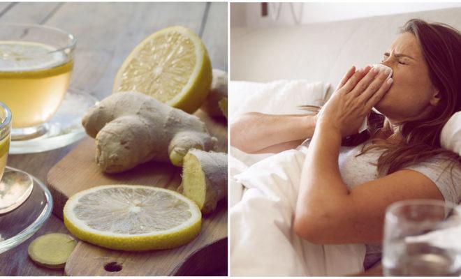 Remedios caseros para cuidar a tu familia de los resfríos