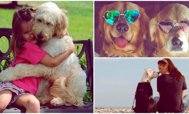Tener una mascota te hará la vida más feliz 🐶❤️🐱🐹