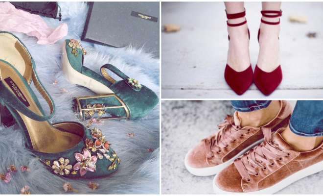 Aprende a limpiar tus zapatos de terciopelo