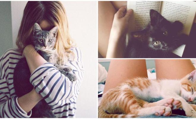 Tener gatos durante más de 10 años me ha enseñado que…