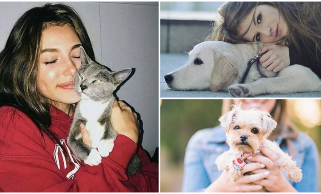 Adoptar o comprar mascotas, ¿qué es mejor?