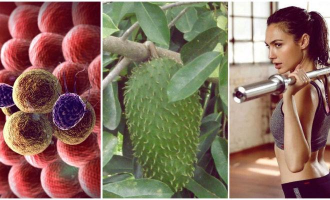 La fruta que ayuda a prevenir el cáncer; ¿ya la comes?