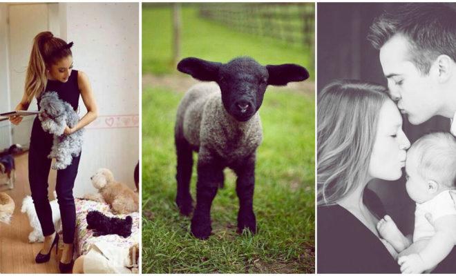 Cómo lidiar con el hecho de ser la oveja negra de la familia