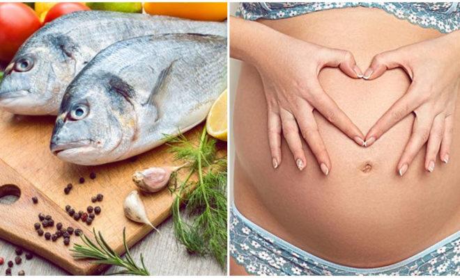 El pescado aumenta las posibilidades de quedar embarazada… ¿será?