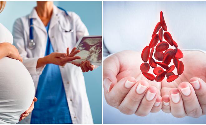 Coagulación de la sangre durante el embarazo, conoce sus ventajas y riesgos