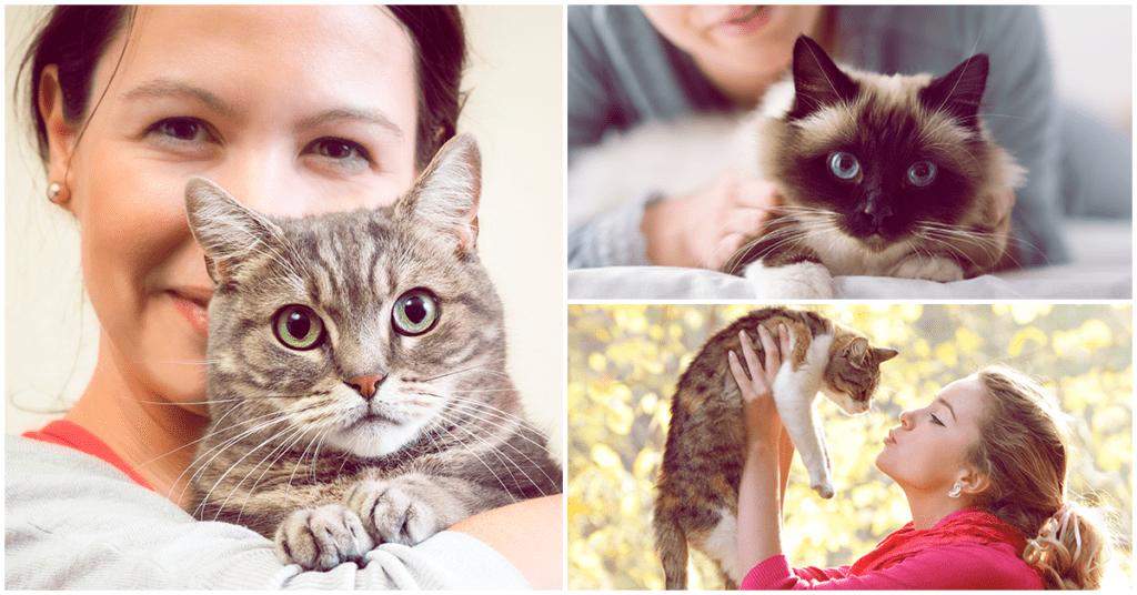 Qué hay de cierto en que los gatos afectan tu embarazo