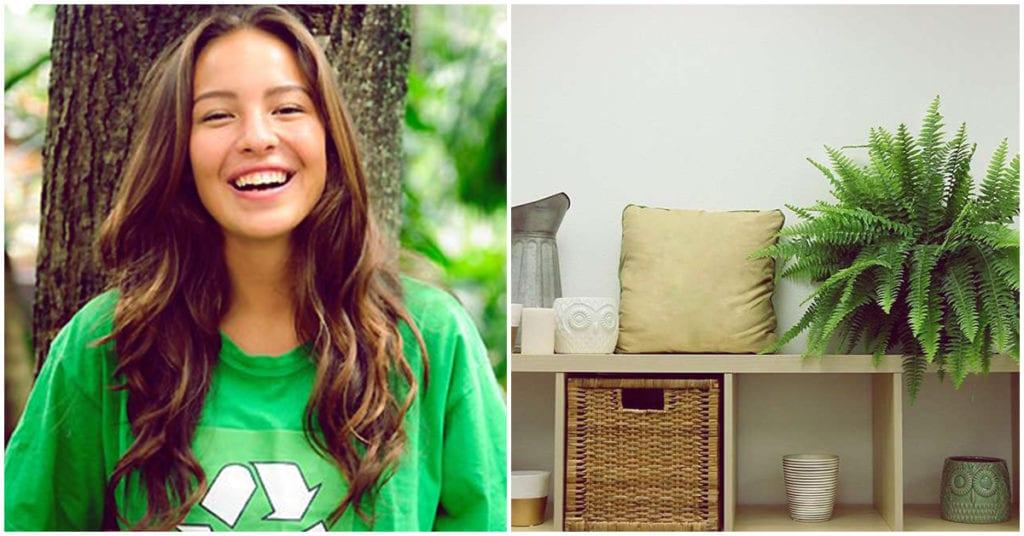 Cómo tener un hogar ecológico, ¡descúbrelo!