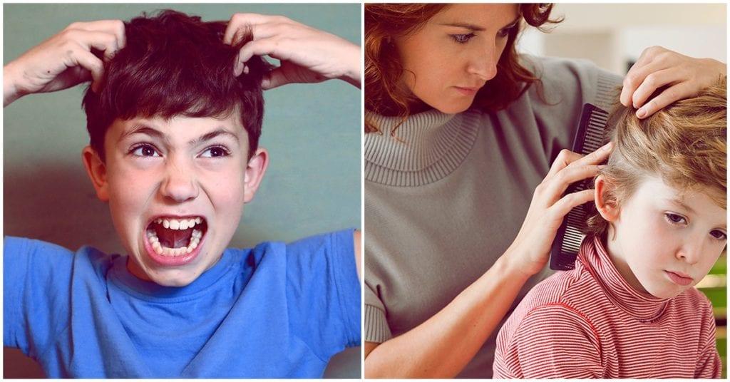 Cómo cuidar el cabello de tus hijos de los terribles piojos