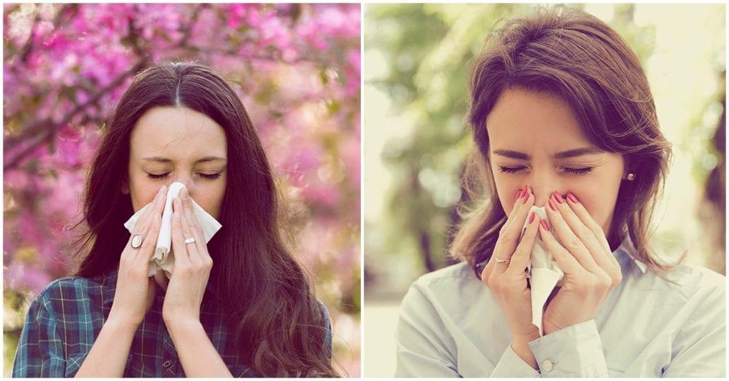 Alergia estacional, así puedes sobrevivir en estos días