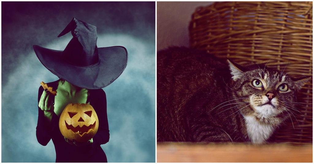 Las cosas más extrañas que han ocurrido en el día de brujas
