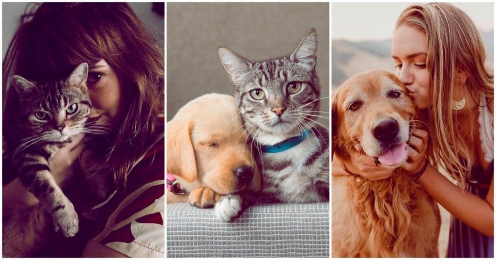 La misión espiritual de tus mascotas, ¿quieres saberla?