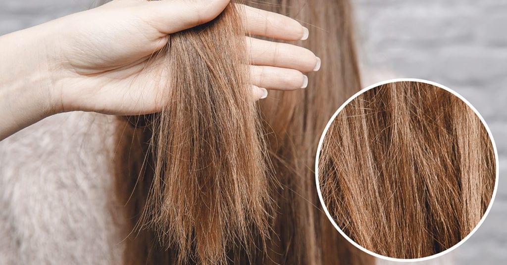 Formas sencillas de reparar tu cabellera dañada