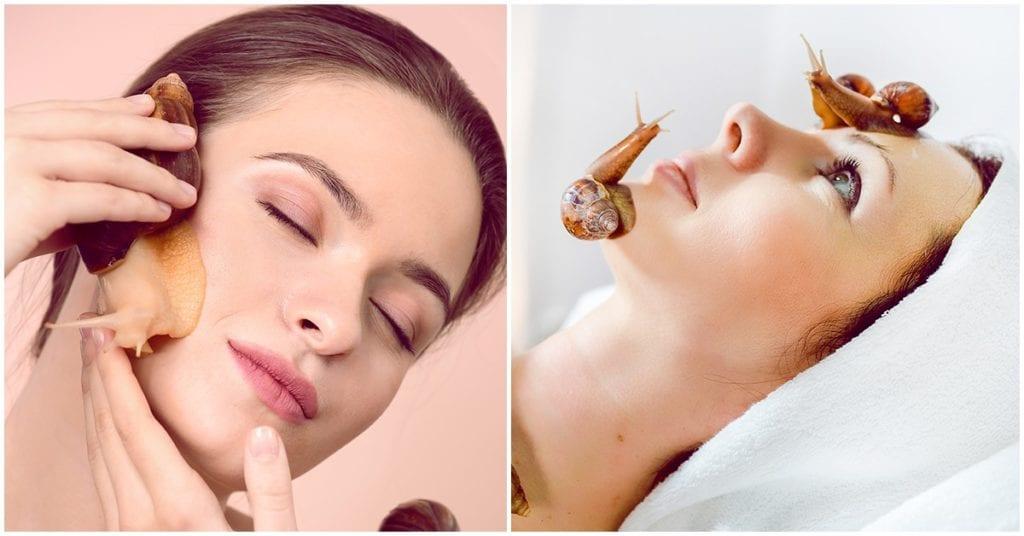 Beneficios de la baba de caracol para tu piel