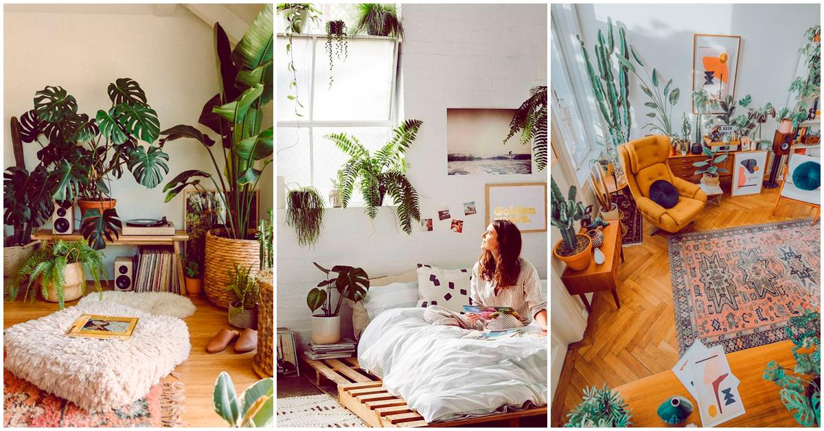 Reacomodar tus plantas ayuda como terapia, ¡créeme!